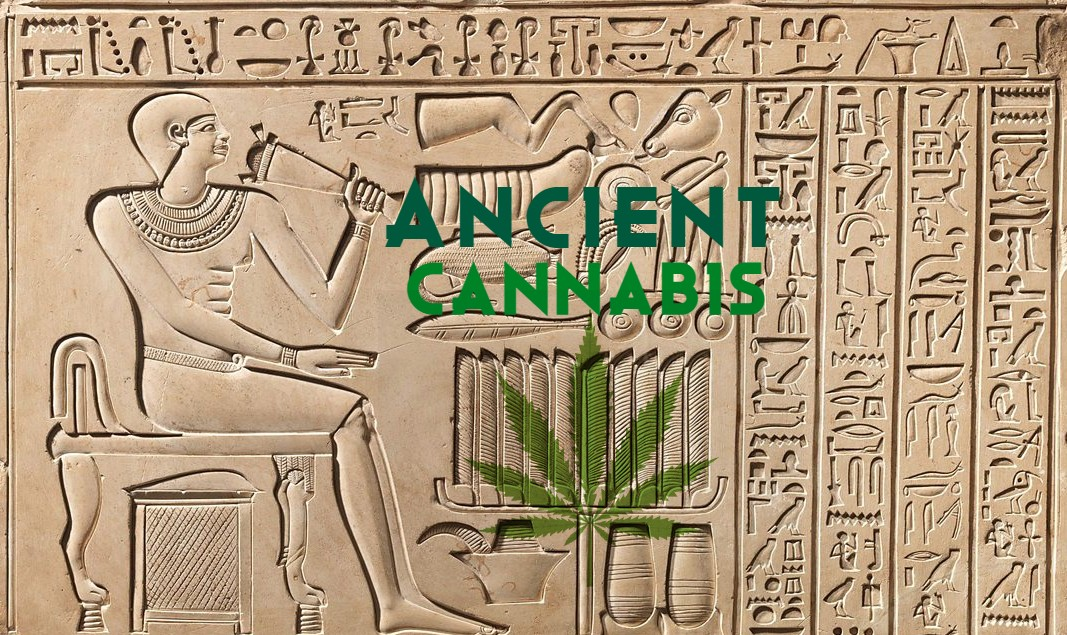 How Ancient Used Cannabis?